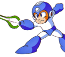Special Weapons (Mega Man 3)