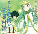 Toaru Majutsu no Index Light Novel Volume 11