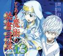Toaru Majutsu no Index Light Novel Volume 13
