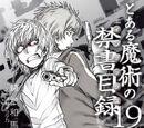 Toaru Majutsu no Index Light Novel Volume 19