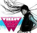 Whip My Hair (song)