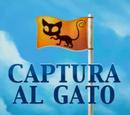 Captura al gato