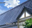 Days in Training