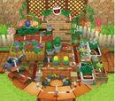 Boards in Mario Party DS