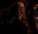 Tales from the Crypt Season 2 episodes