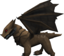 Baby bronze dragon