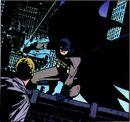 Batman 0275.jpg