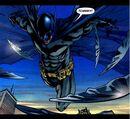 Batman 0288.jpg