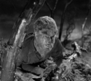 The Wolf Man (Film Synopsis)