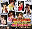 Berryz Koubou Concerts