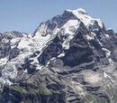 Mountain or highland habitat