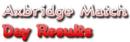 Bridge Logo.png