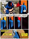 Batman 0459.jpg