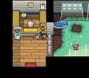 Pokémon Day Care