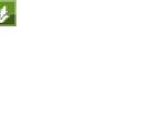 Pan-Asian Coalition