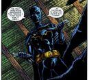 Batgirl Cassandra Cain 0023.jpg