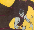 Who's Who in the Legion of Super-Heroes Vol 1 6/Images