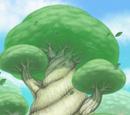Bosques de Teselia