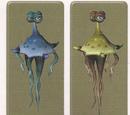 Medusa tamariana