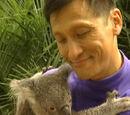 Koala La La