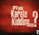 Are You Karate Kidding Me?