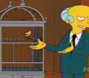 Canário M. Burns