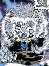 Hoarfen (Earth-616) from Incredible Hulk Vol 1 422 0001.jpg