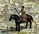 Cavalry Spearman