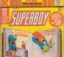 DC 100-Page Super Spectacular Vol 1 21