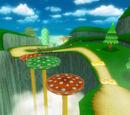 Trampoline Mushroom