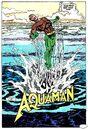 Aquaman 0117.jpg