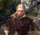 Witcher  How To Craft Studded Leather