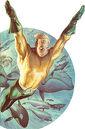 250px-Ross Aquaman.jpg