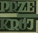 Polish magazines