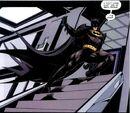Batman 0610.jpg