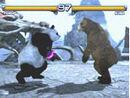 Tekken5panda.jpg