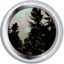 Badge-2440-3.png
