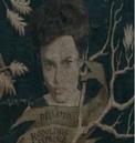 Bellatrix Black (arbre généalogique).PNG