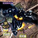 Batman Iron Sky 001.jpg