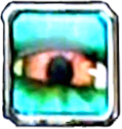 Eye of the Lost skill icon.png