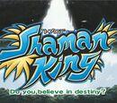 List of Shaman King episodes