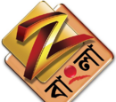 Bengali-language television channels in India