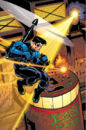 Nightwing 0030.jpg