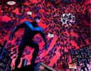 Nightwing 0045.jpg