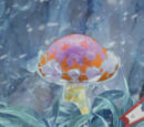Hot Mushroom