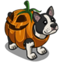 Pumpkin Terrier-icon.png