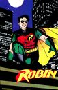 Robin Tim Drake 0090.jpg