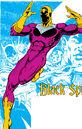 Black Spider 0004.jpg