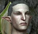 Торговцы (Dragon Age II)