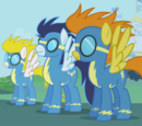 So You Want to Be a Wonderbolt?